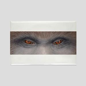 Sasquatch Eyes Rectangle Magnet