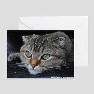 Noodles the cat greeting card - thinking about you