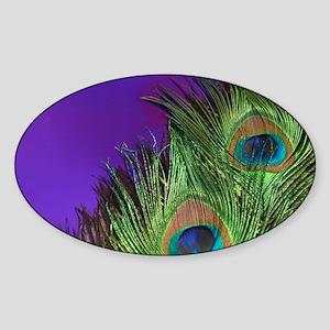 Purple Foil Peacock Sticker