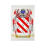 Castane Rectangle Magnet (100 pack)