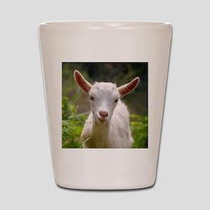 Baby goat Shot Glass