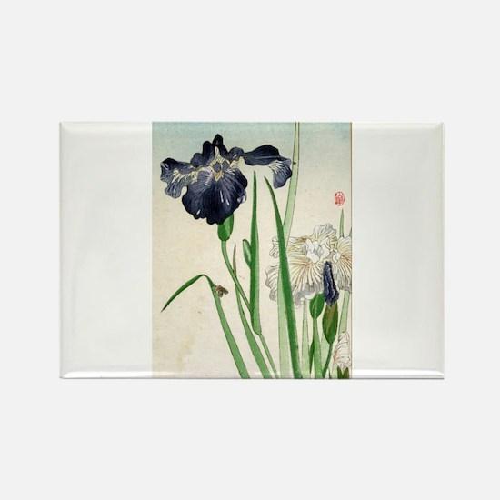 Irises - anon - 1900 - woodcut Magnets