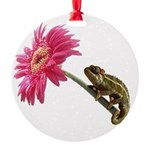 Chameleon Lizard on pink flower Round Ornament