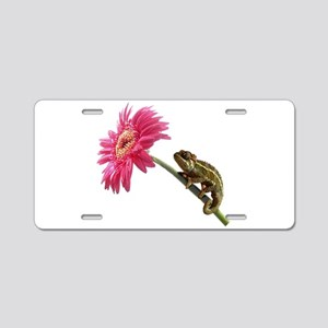 Chameleon Lizard on pink flower Aluminum License P
