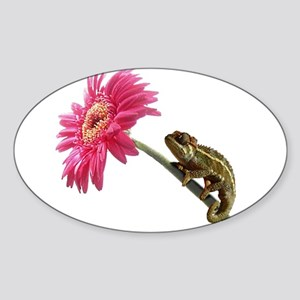 Chameleon Lizard on pink flower Sticker