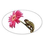 Chameleon Lizard on pink flower Sticker