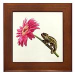 Chameleon Lizard on pink flower Framed Tile