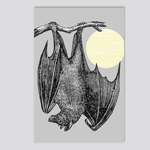 Hanging Bat Postcards (Package of 8)