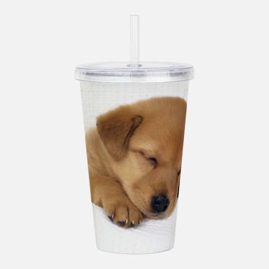 Cute Labrador Puppy Acrylic Double-Wall Tumbler