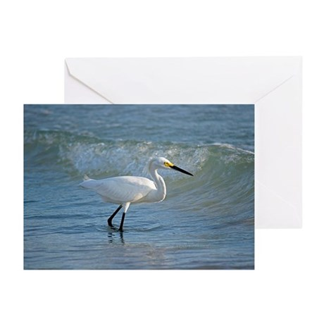 Snowy egret Greeting Cards (Pk of 10)