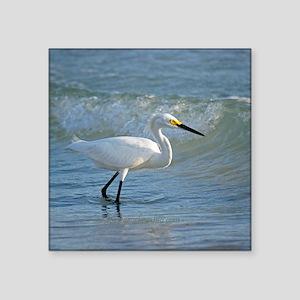 Snowy egret Sticker