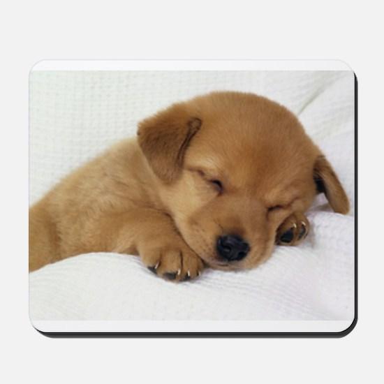 Cute Labrador Puppy Mousepad