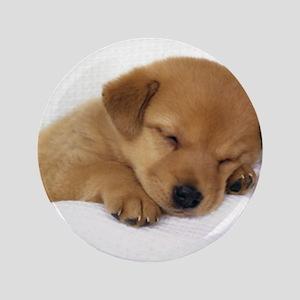 Cute Labrador Puppy Button