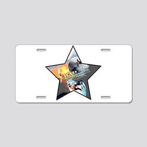 RAD 310 VENICE BEACH Aluminum License Plate