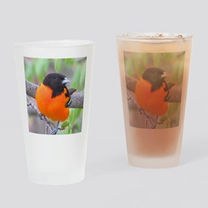Baltimore Oriole Drinking Glass
