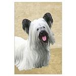Skye Terrier Large Poster