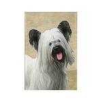 Skye Terrier Rectangle Magnet (10 pack)