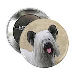 Skye Terrier 2.25