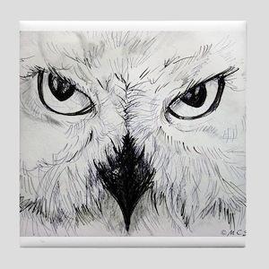 Owl! Wildlife, bird art! Tile Coaster