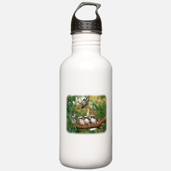 Kookaburra 9Y172D-004 Sports Water Bottle