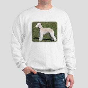 Pied Currawong 9R023D-178 Sweatshirt