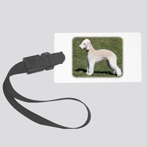 Pied Currawong 9R023D-178 Large Luggage Tag