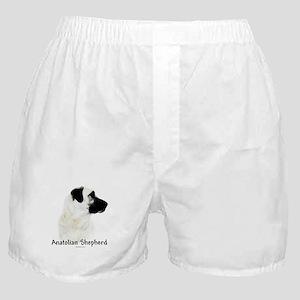 Anatolian Charcoal Boxer Shorts