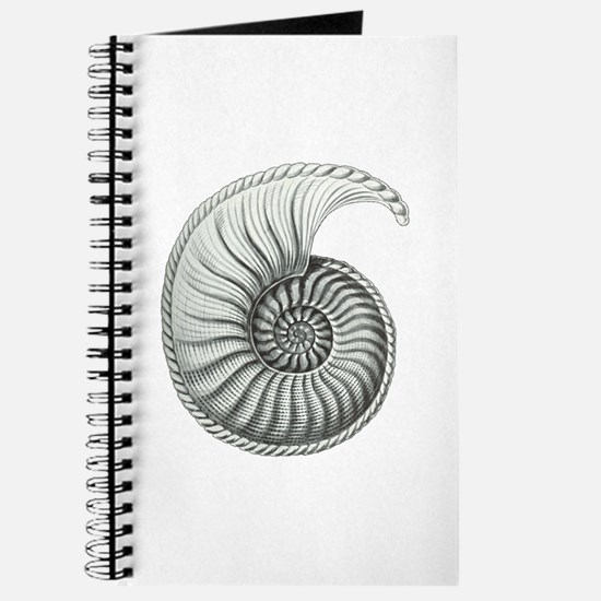 Ammonite Journal