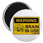 Brain in Use Magnet
