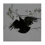 Black Vulture Flying Tile Coaster
