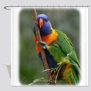 Rainbow Lorikeet 9Y209D-177 Shower Curtain