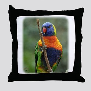 Rainbow Lorikeet 9Y209D-181 Throw Pillow