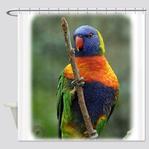 Rainbow Lorikeet 9Y209D-181 Shower Curtain