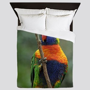 Rainbow Lorikeet 9Y209D-181 Queen Duvet