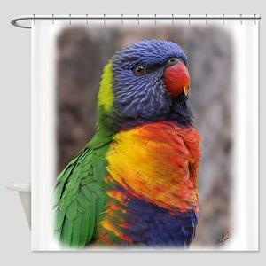 Rainbow Lorikeet 9Y543D-021 Shower Curtain