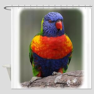 Rainbow Lorikeet 9Y543D-046 Shower Curtain