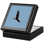 Ragged Eagle Keepsake Box
