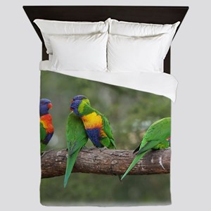 Rainbow Lorikeets 9Y543D-002 Queen Duvet