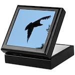 Young Flying Eagle Keepsake Box