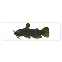 Bullhead Catfish Bumper Bumper Sticker
