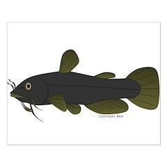 Bullhead Catfish Posters