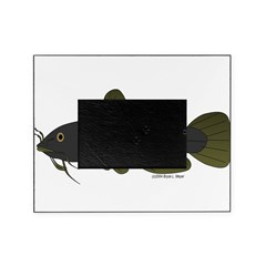 Bullhead Catfish Picture Frame