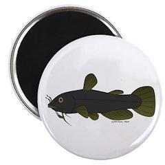 Bullhead Catfish Magnet