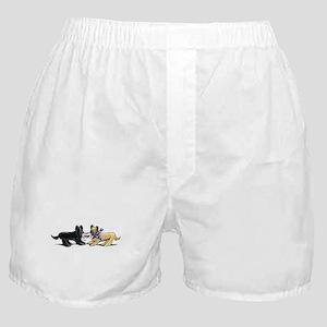 Briard Hat Off-Leash Art™ Boxer Shorts