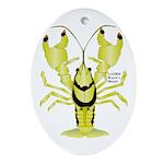 Crayfish Freshwater Ringed PBFW Ornament (Oval)