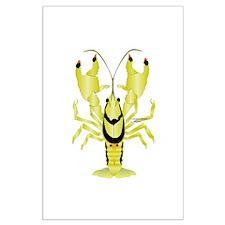 Crayfish Freshwater Ringed PBFW Posters
