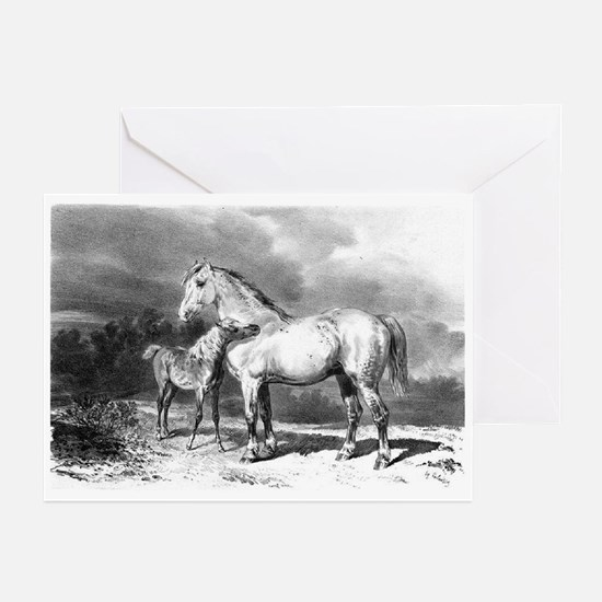 Mama And Baby Horse Greeting Cards (Pk of 10)