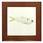 Threadfin Shad hr fish Framed Tile