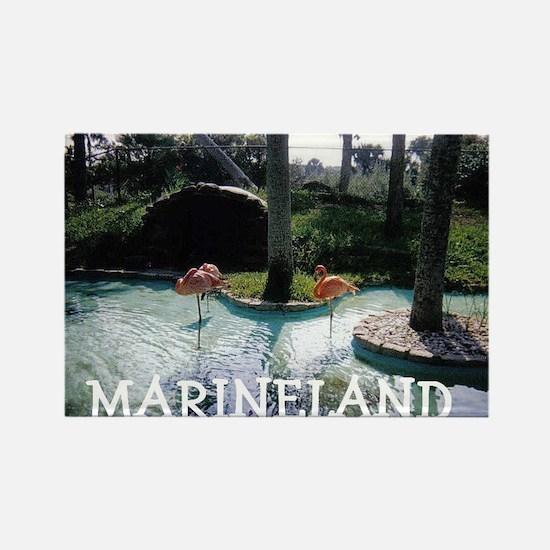 Marineland Florida Rectangle Magnet