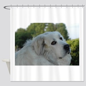 Great Pyr Shower Curtain
